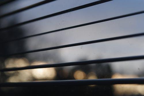 Free stock photo of evening sky, glass window, streetlights