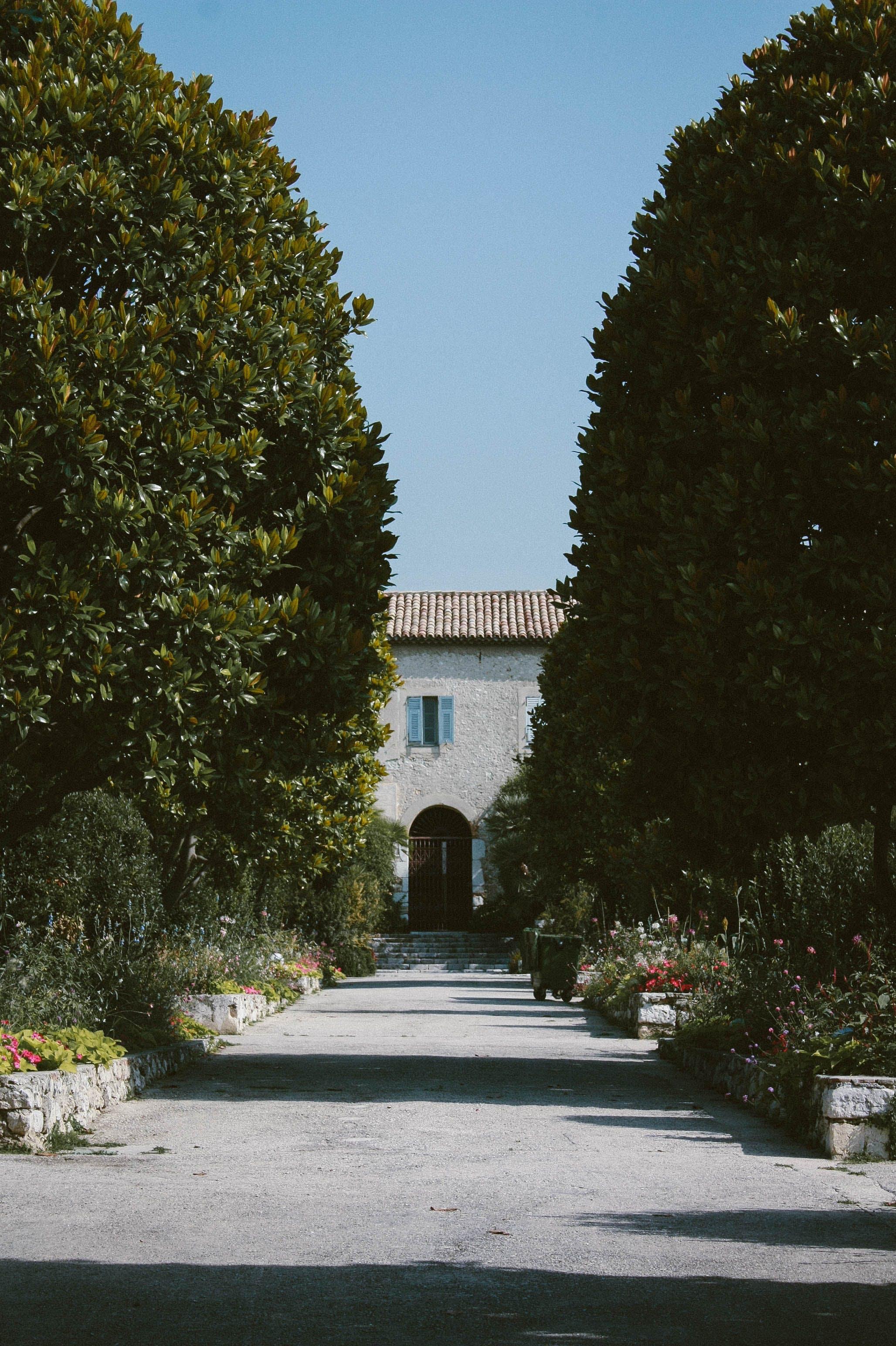Kostenloses Stock Foto zu architektur, bäume, beratung, garten
