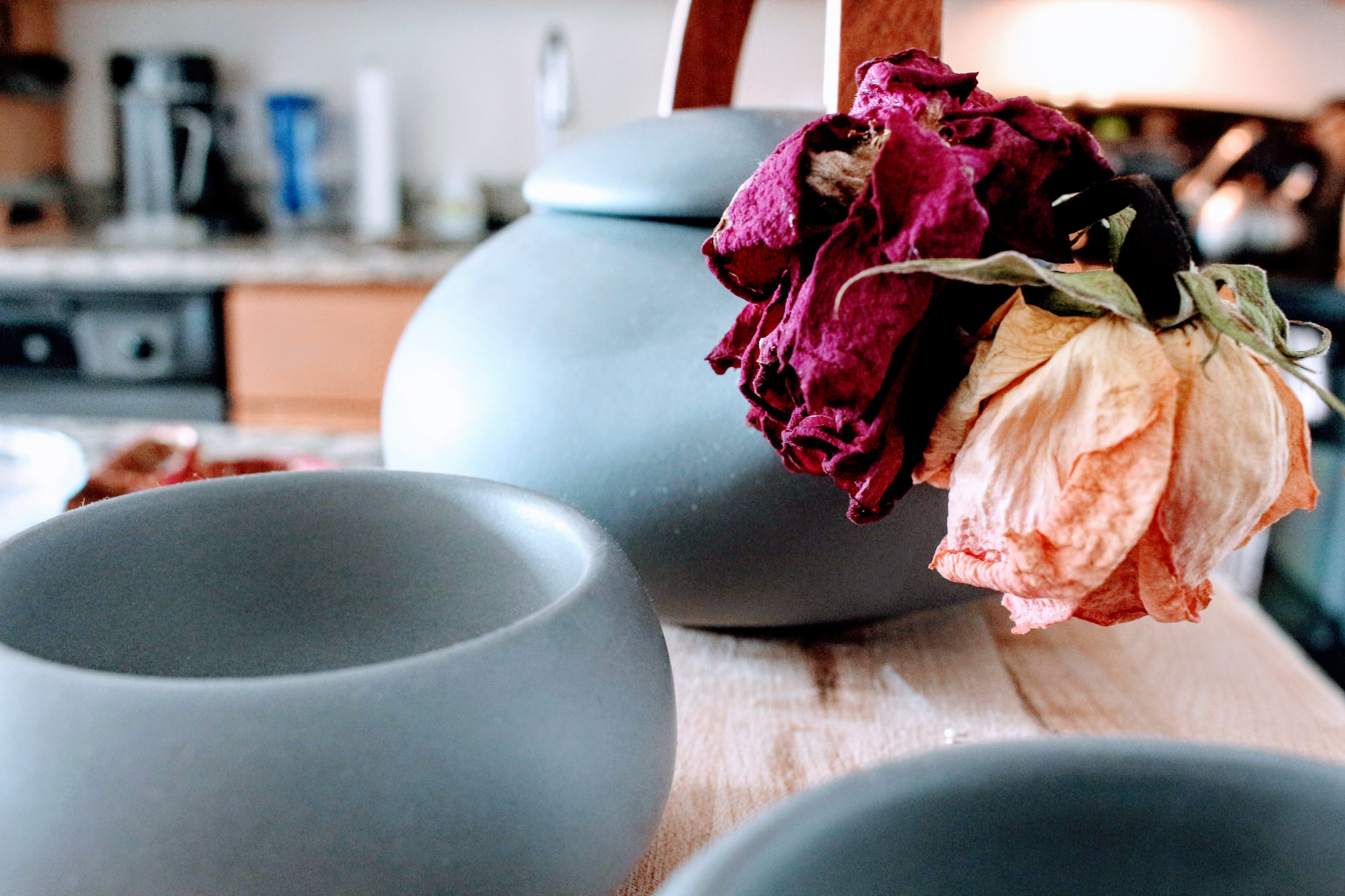 Three Round Teal Ceramic Jars on Brown Wooden Table Near Pink and Purple Petaled Flowers