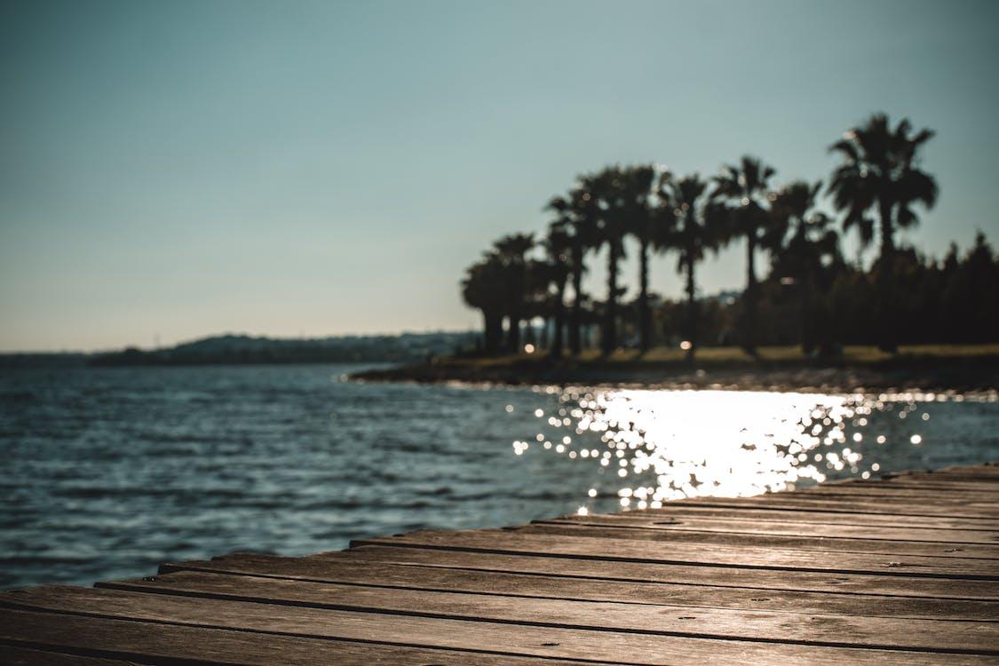 brygge, daggry, hav