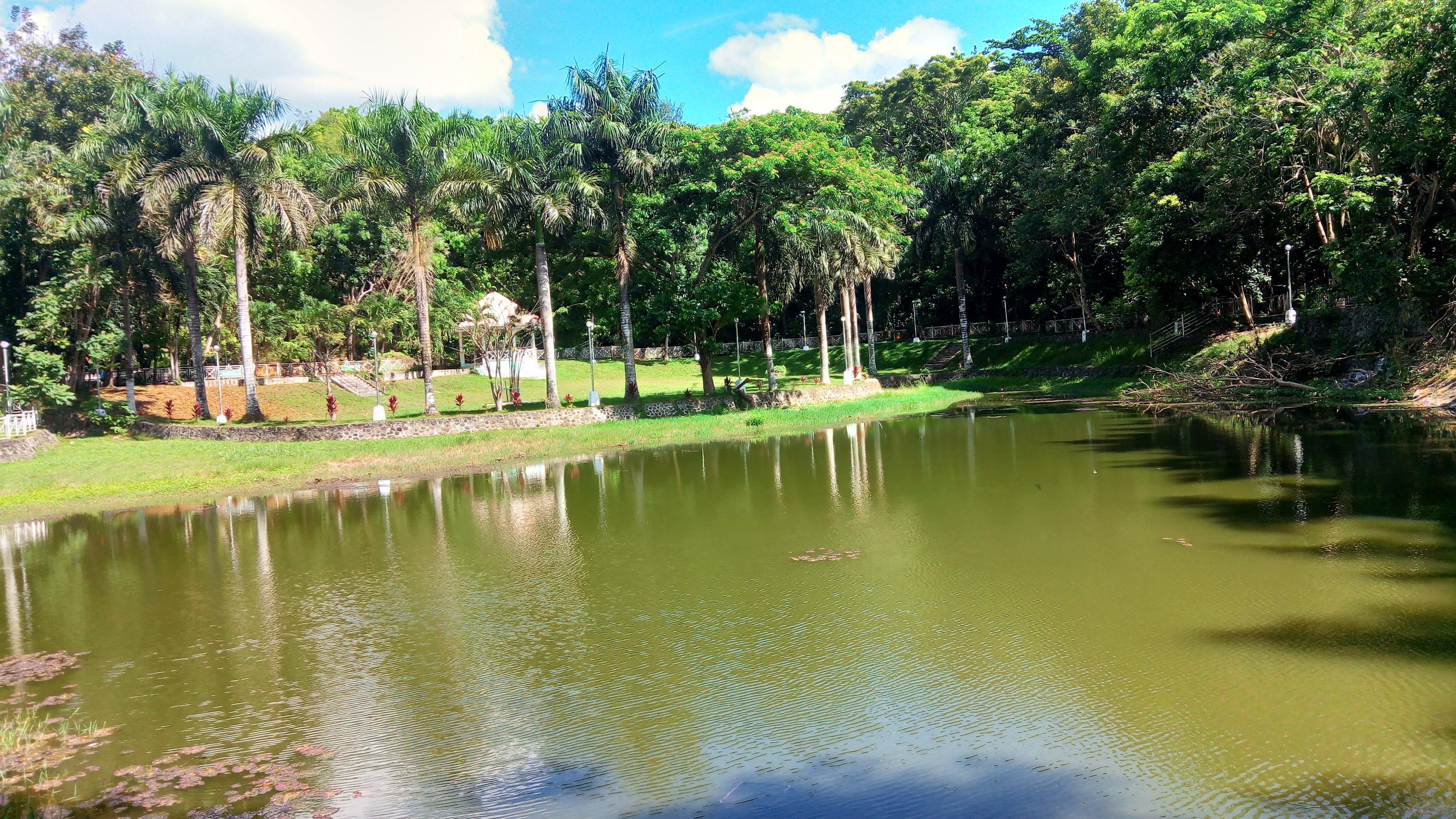 Free stock photo of garden pond, lagoon, manmade lake, park