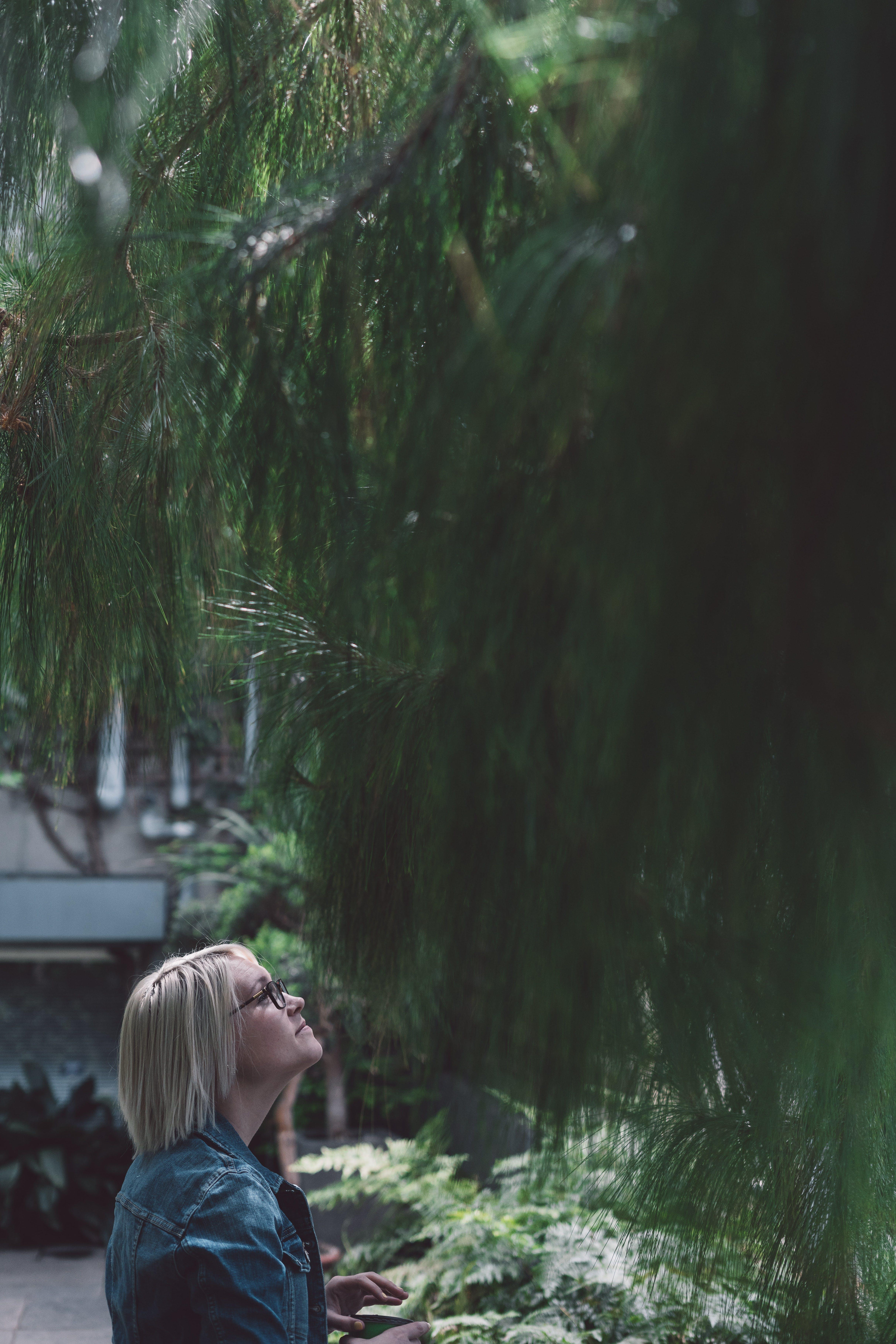 Woman Wearing Eyeglasses Staring at Pine Tree