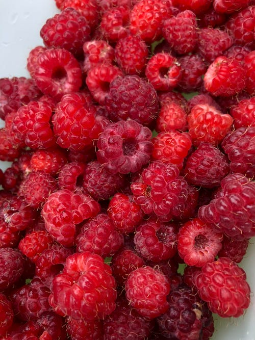 Free stock photo of rasberry, red fruits, summer