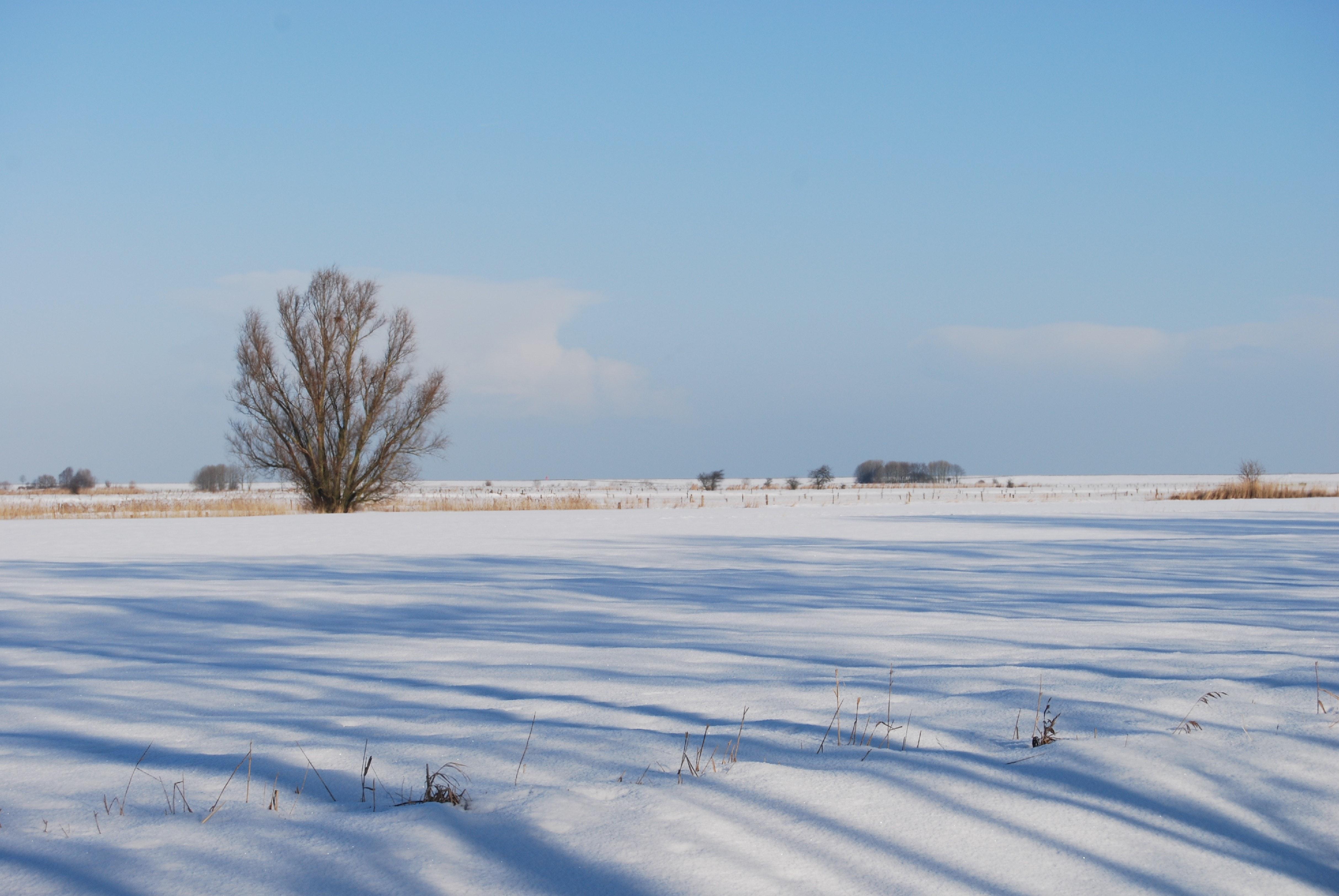 ... phong cảnh mùa đông, Thiên đường mùa đông. Nhiếp ảnh gia