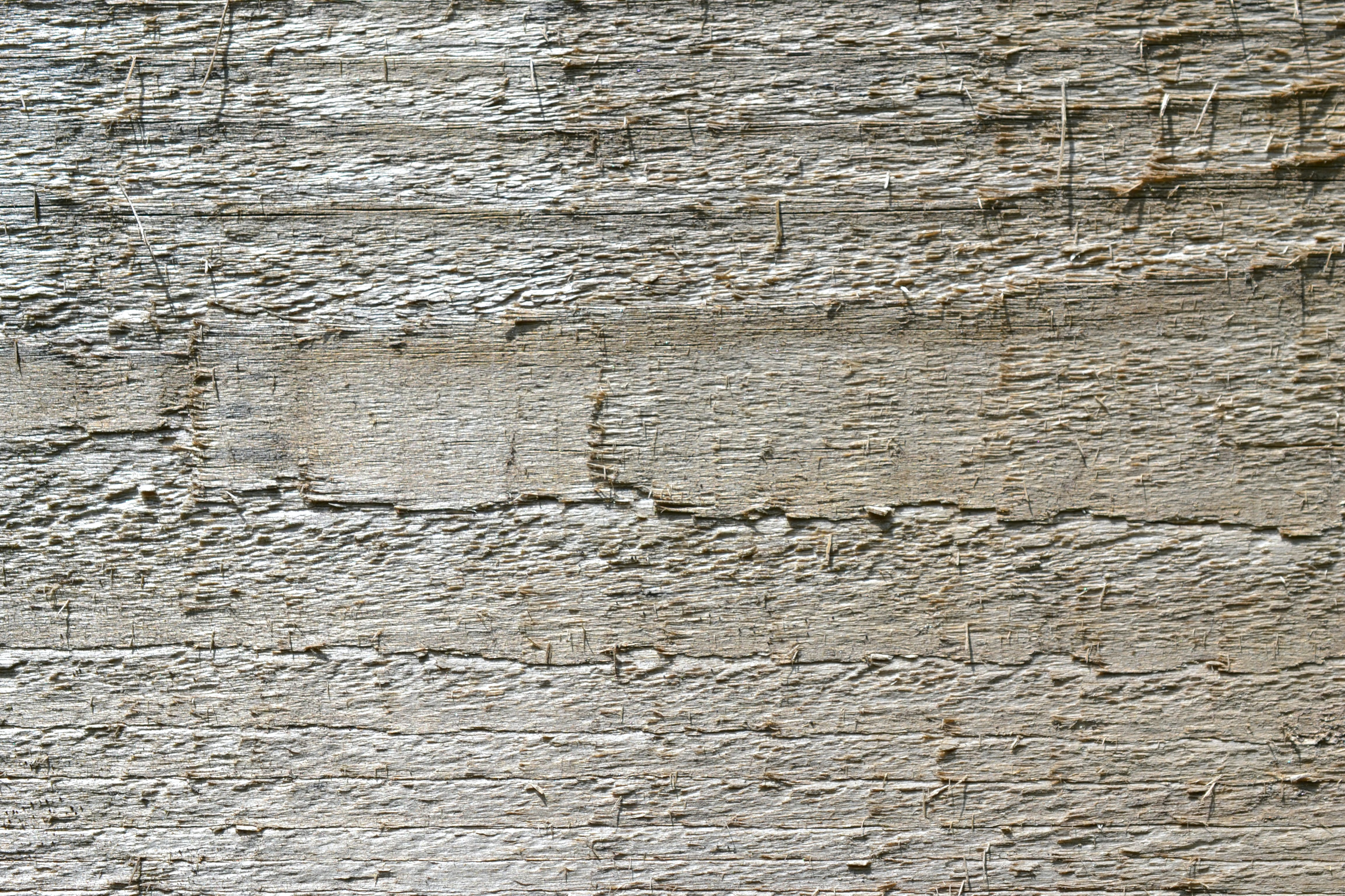 Free stock photo of background, knot, natural, old