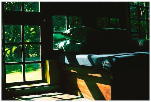 Darmowe zdjęcie z galerii z #sunshine #deep #mood