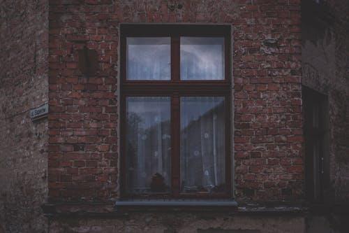 Foto d'estoc gratuïta de arquitectura, edifici, façana, mur