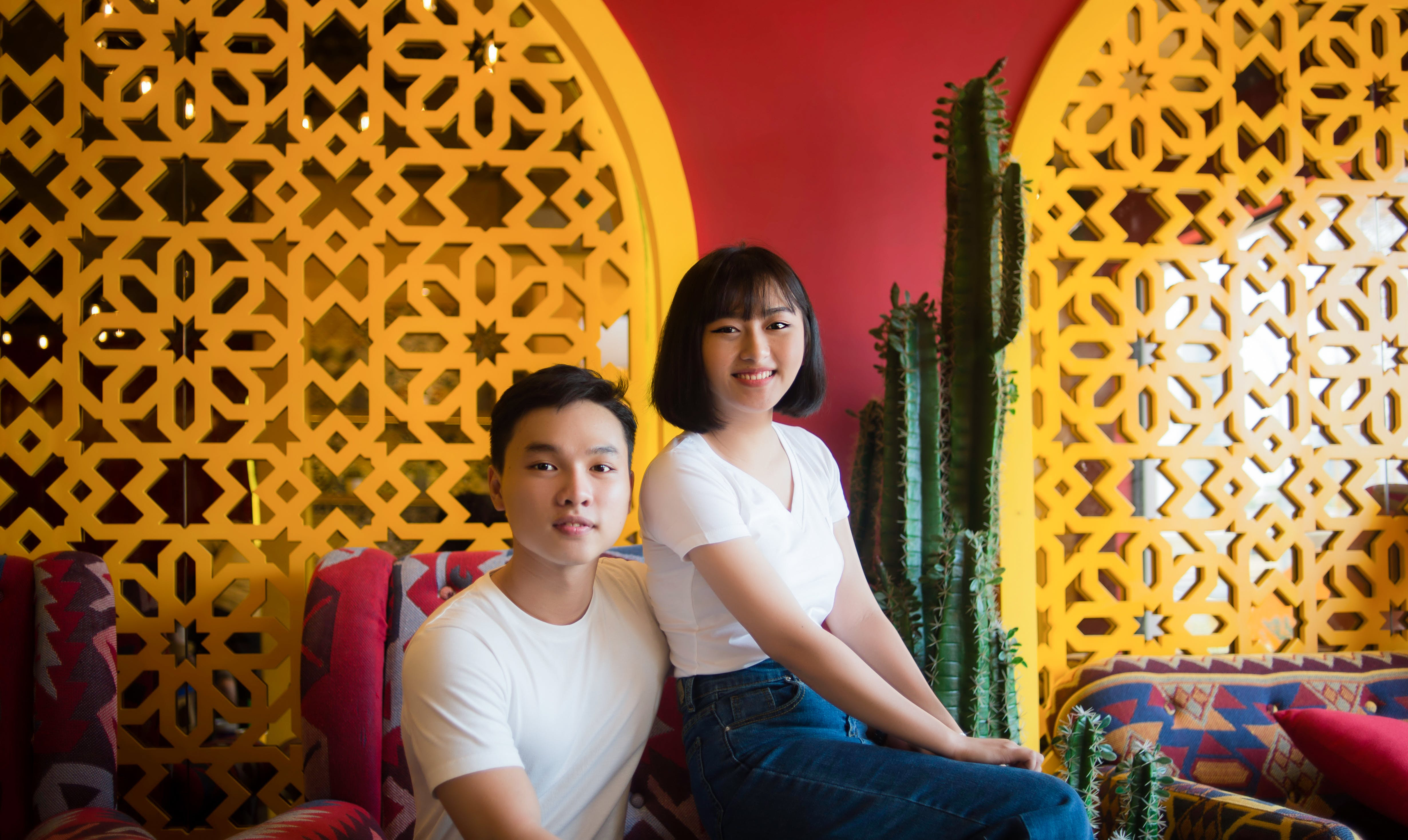 Man And Woman Sitting On Chair Beside Cactus Plant