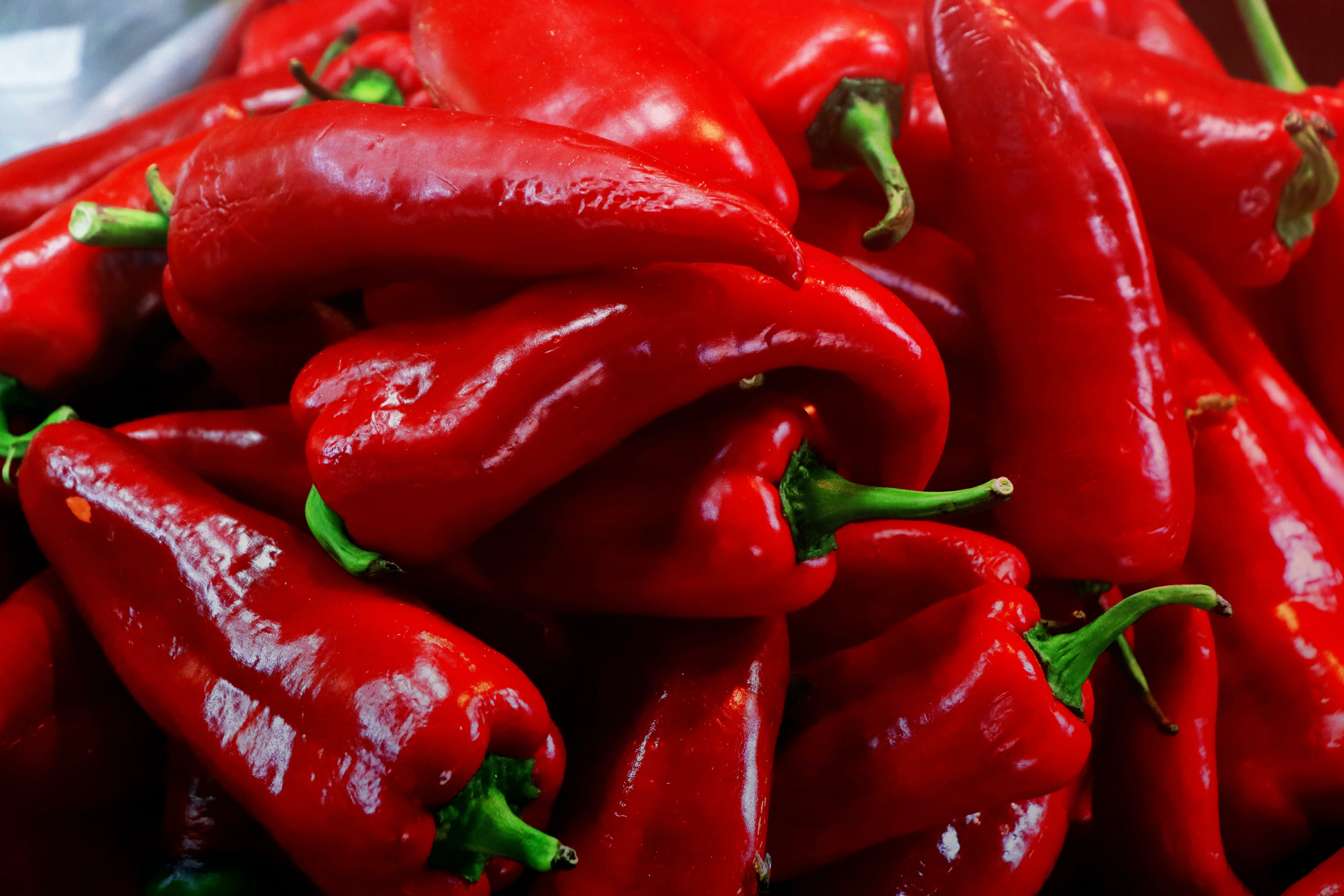 Free stock photo of bell pepper, bell peppers, chili peppers, pepperoni