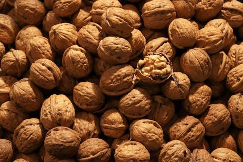 Free stock photo of nuts, walnut, walnuts