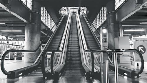 Fotobanka sbezplatnými fotkami na tému čierny abiely, eskalátory, pohyblivé schody, vinteriéri