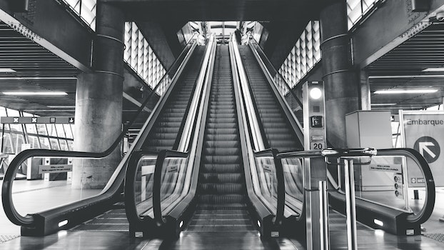 Free stock photo of black-and-white, escalators, indoors