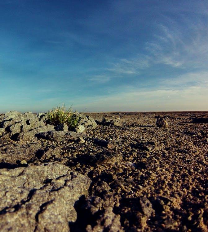 África, botswana, deserto