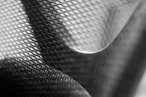 Δωρεάν στοκ φωτογραφιών με ασπρόμαυρο, βάθος πεδίου, γκρο πλαν, δίχτυ