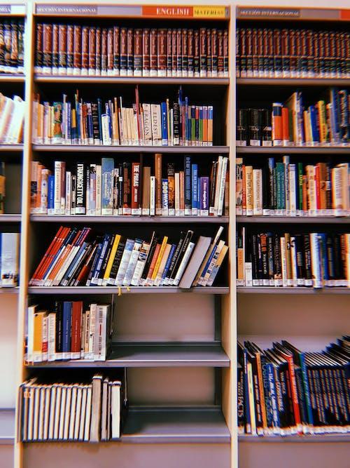 Základová fotografie zdarma na téma kniha, knihovna, knihy, literatura