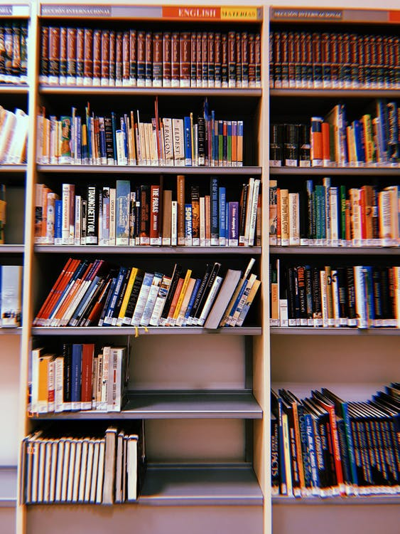 Bookshelves Filled With Books