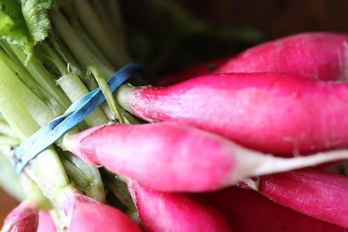 Kostenloses Stock Foto zu essen, frisch, gesund, lebensmittel