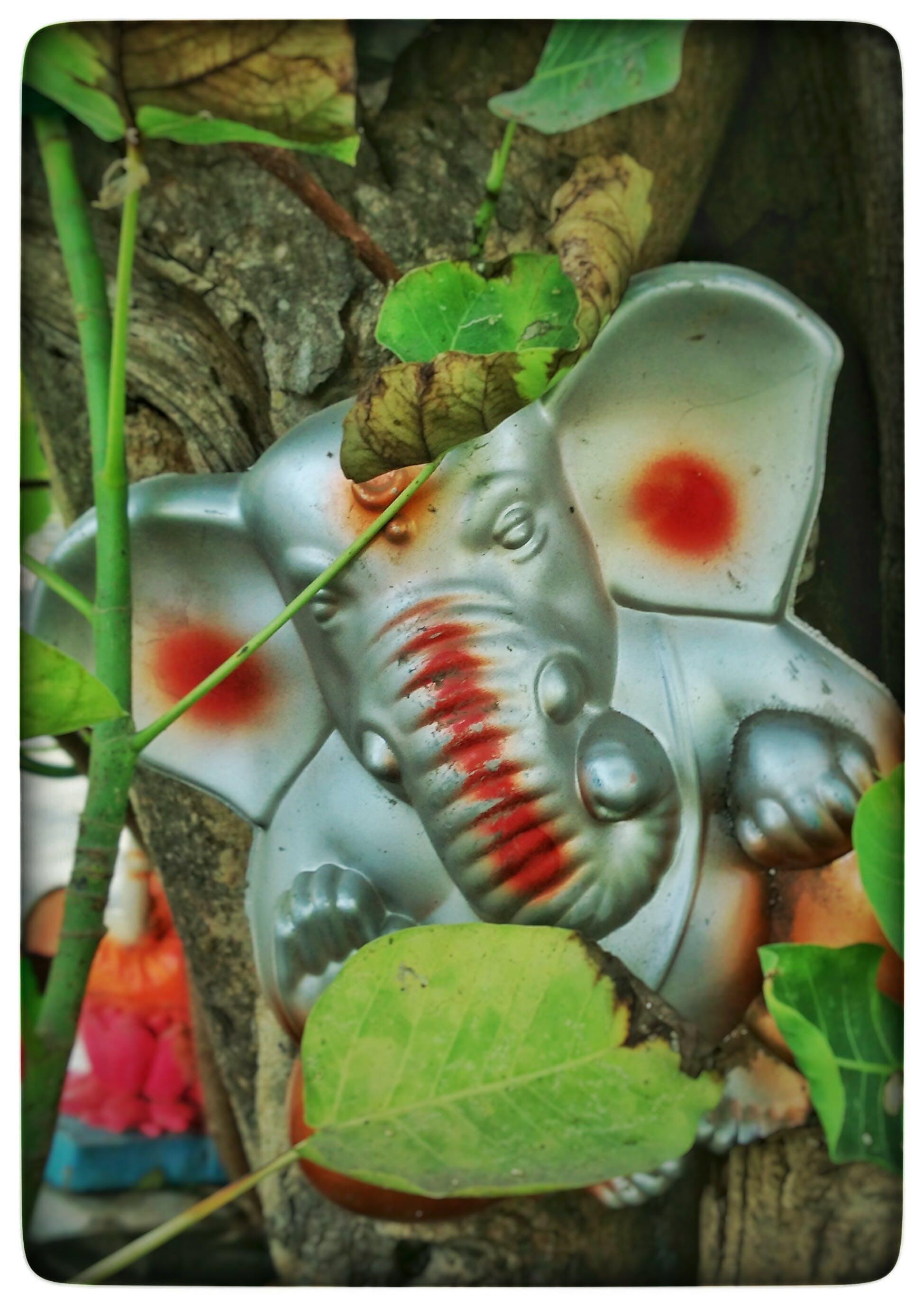 Free stock photo of god, indian, mythology, smartphone