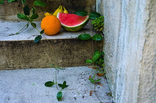 Fruits on Top of Concrete Steps