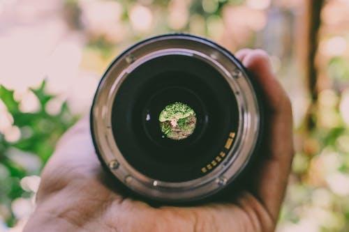 Kostnadsfri bild av håller, hand, kameralins, lins
