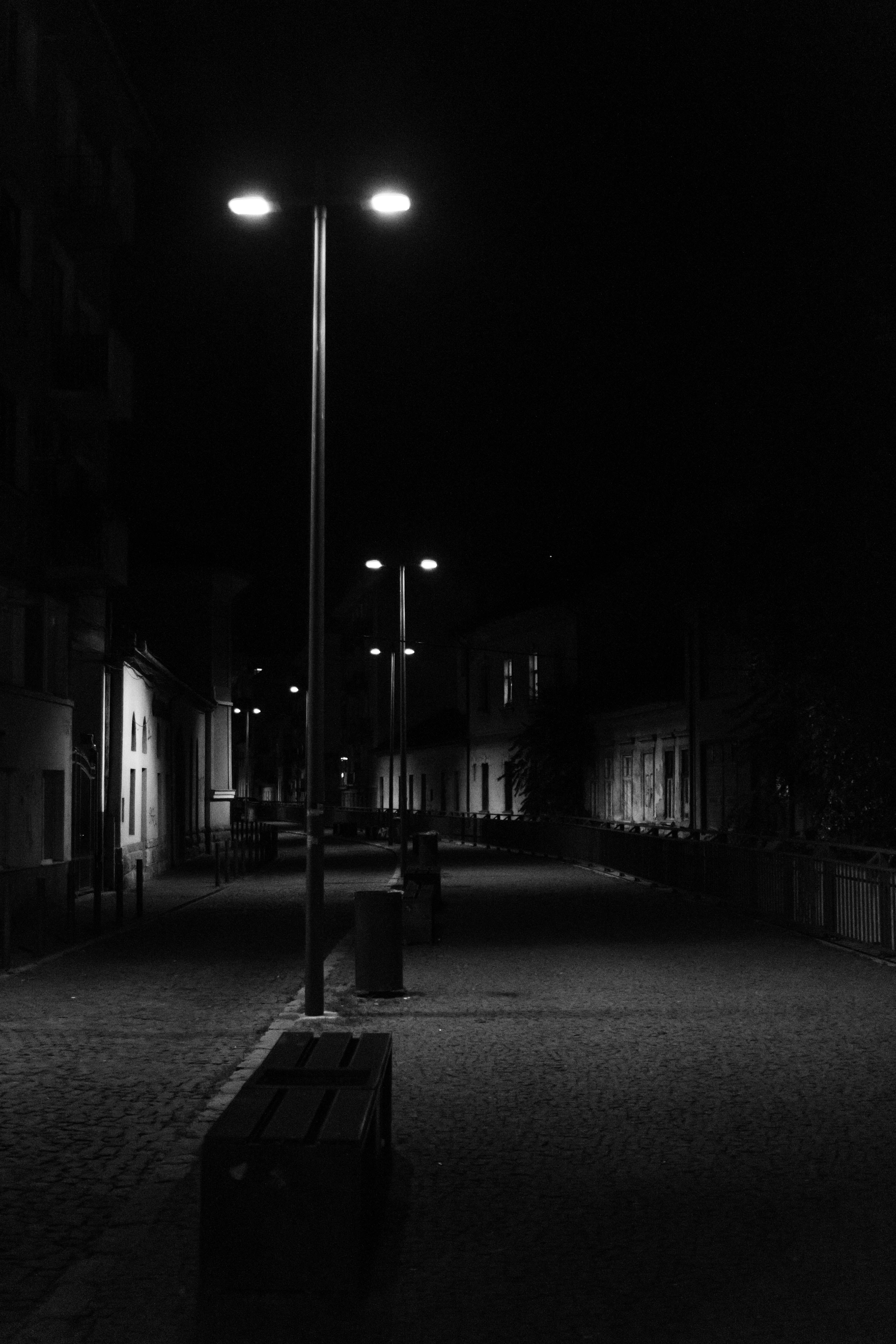 Grayscale Photography of Street Lights Along the Road Between Houses
