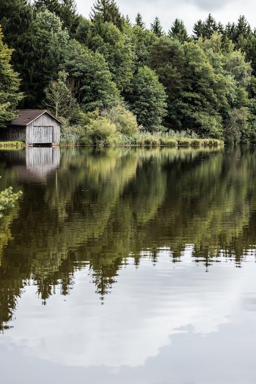 Fotos de stock gratuitas de #bosque, agua, casa barco, lago de montaña