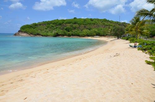 Gratis arkivbilde med #costarica, #hav, #sand, #strand