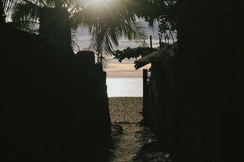 Ảnh lưu trữ miễn phí về bãi biển, bờ biển, Hoàng hôn, Thiên nhiên