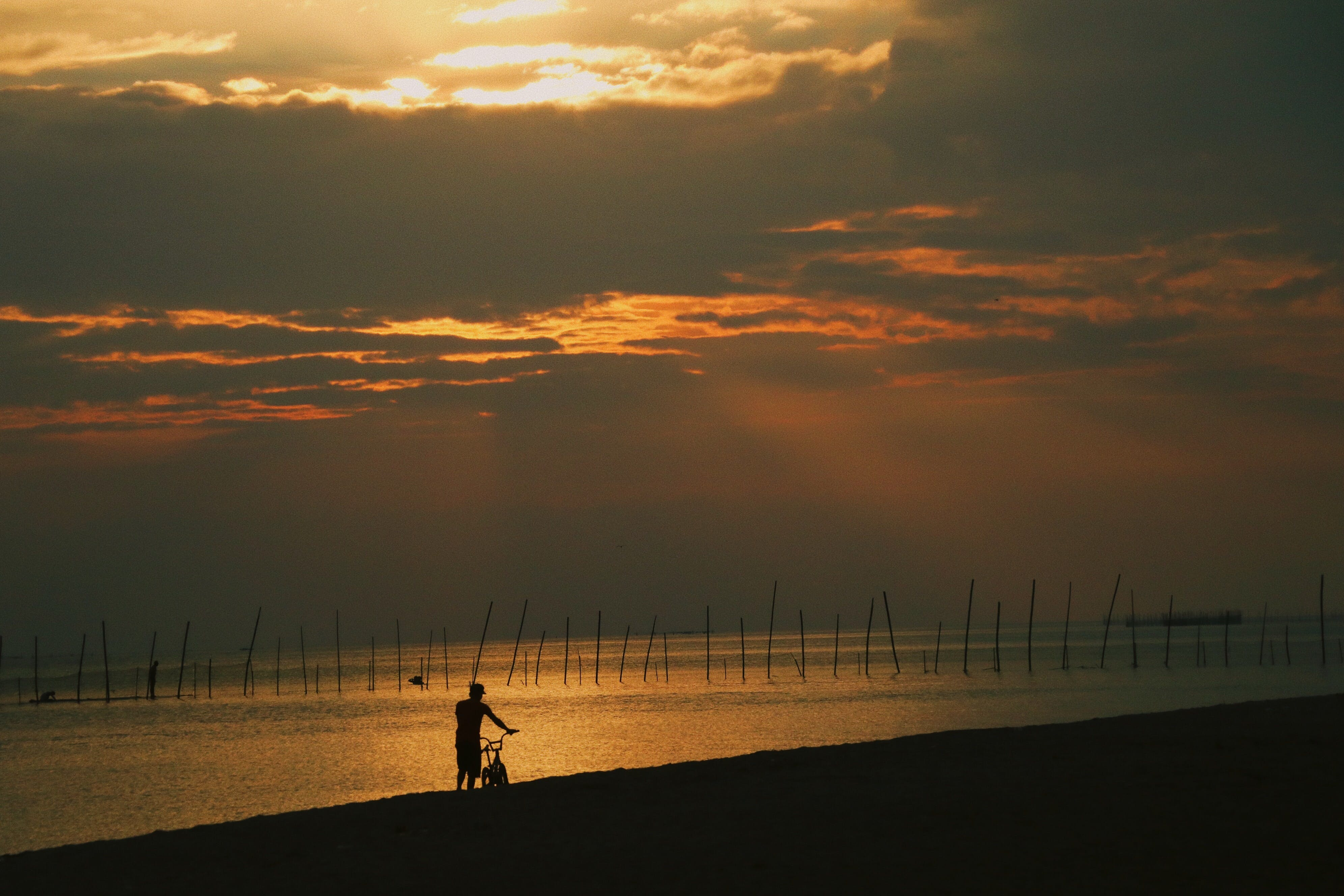 Free stock photo of golden sunset, man, man and sunset, man in the beach