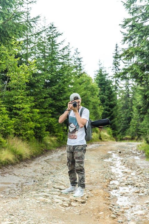 Darmowe zdjęcie z galerii z drzewa, fotograf, mężczyzna, osoba