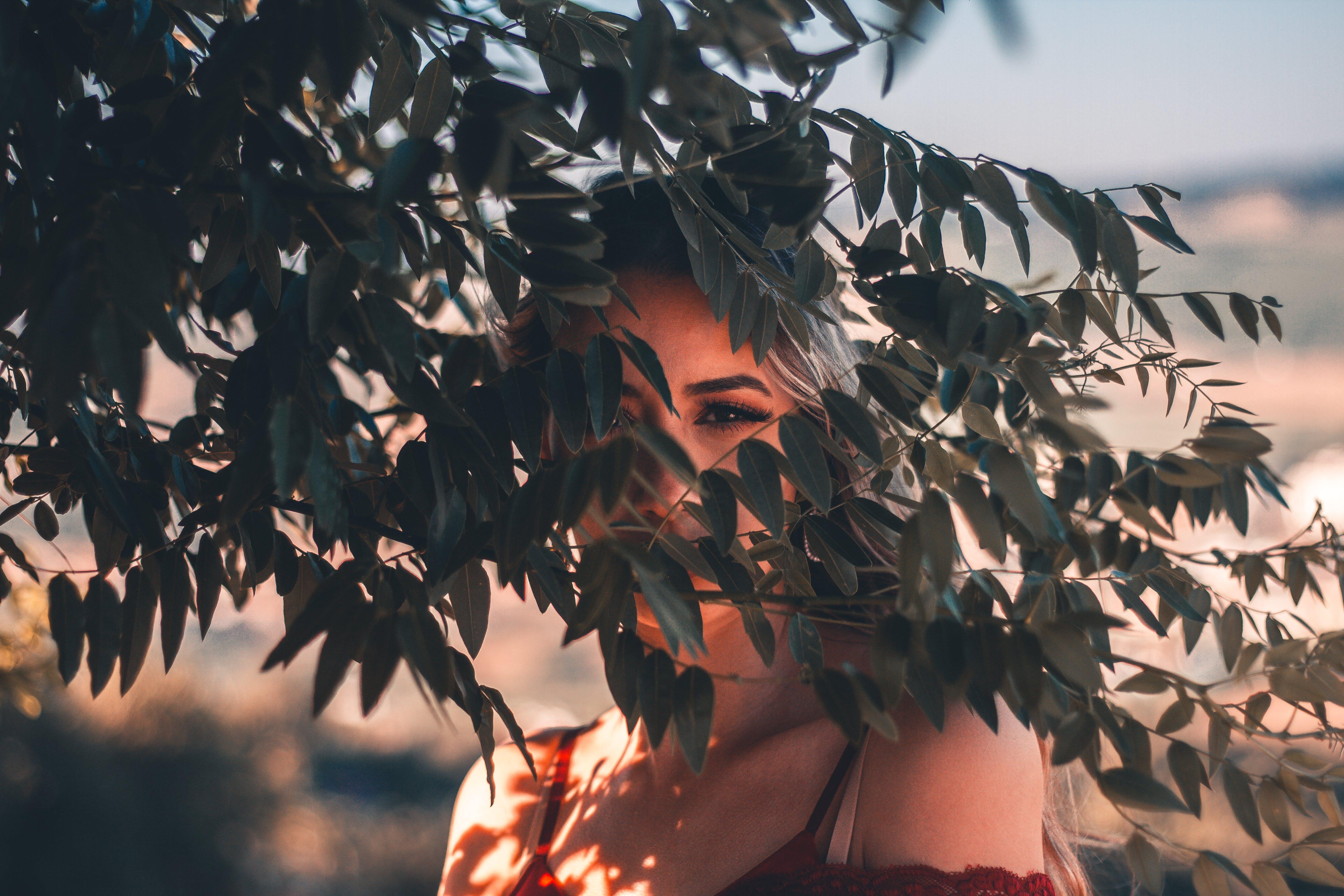 Δωρεάν στοκ φωτογραφιών με άνθρωπος, γυναίκα, δέντρο, θηλυκός