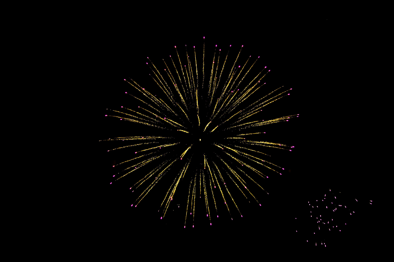 Free stock photo of celebration, fireworks, fireworks display, usa