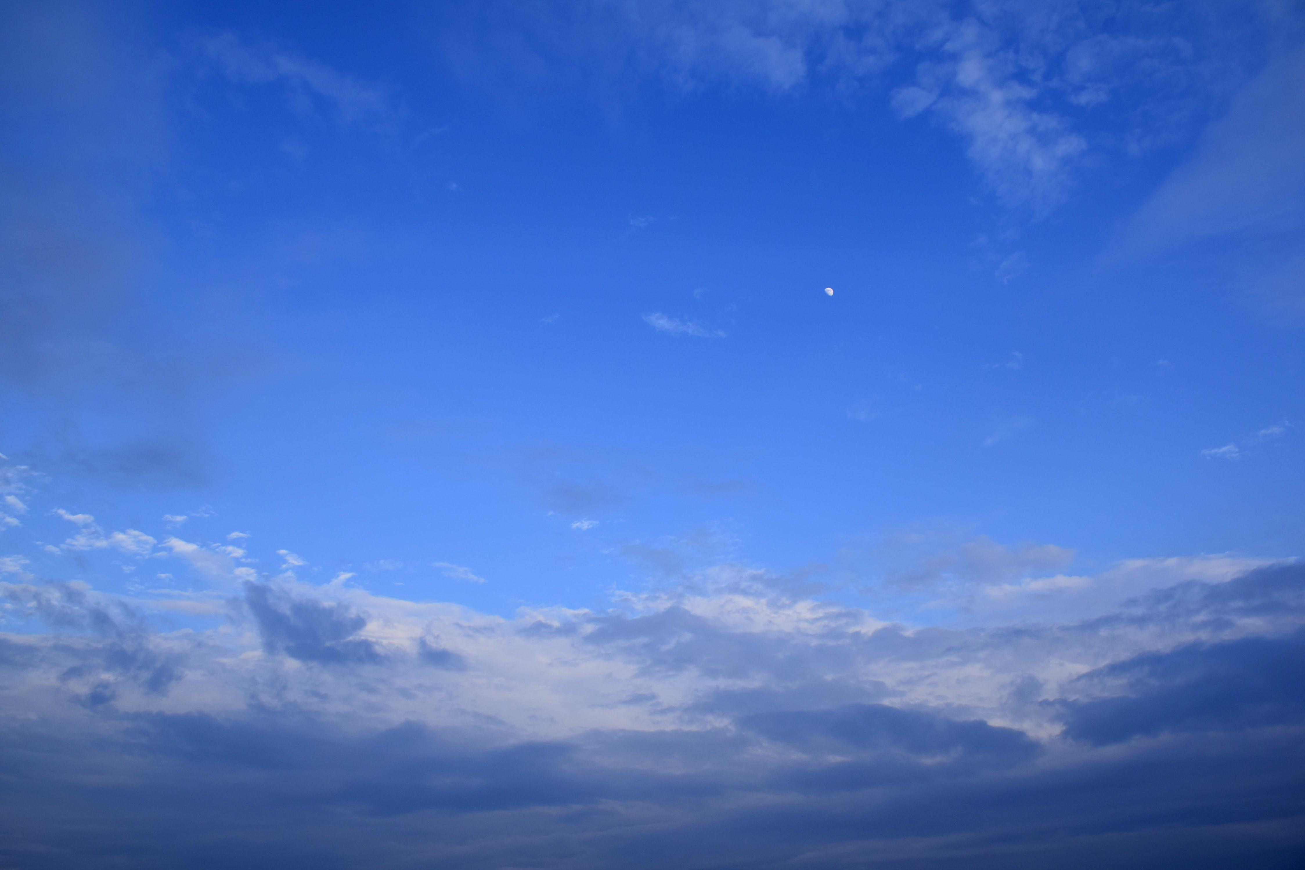 Free stock photo of blue sky, cloud, moon, night