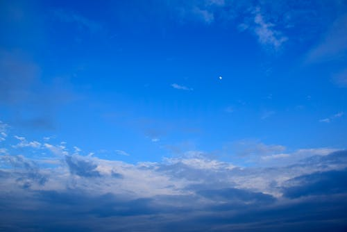 Free stock photo of blue sky, cloud, moon, night