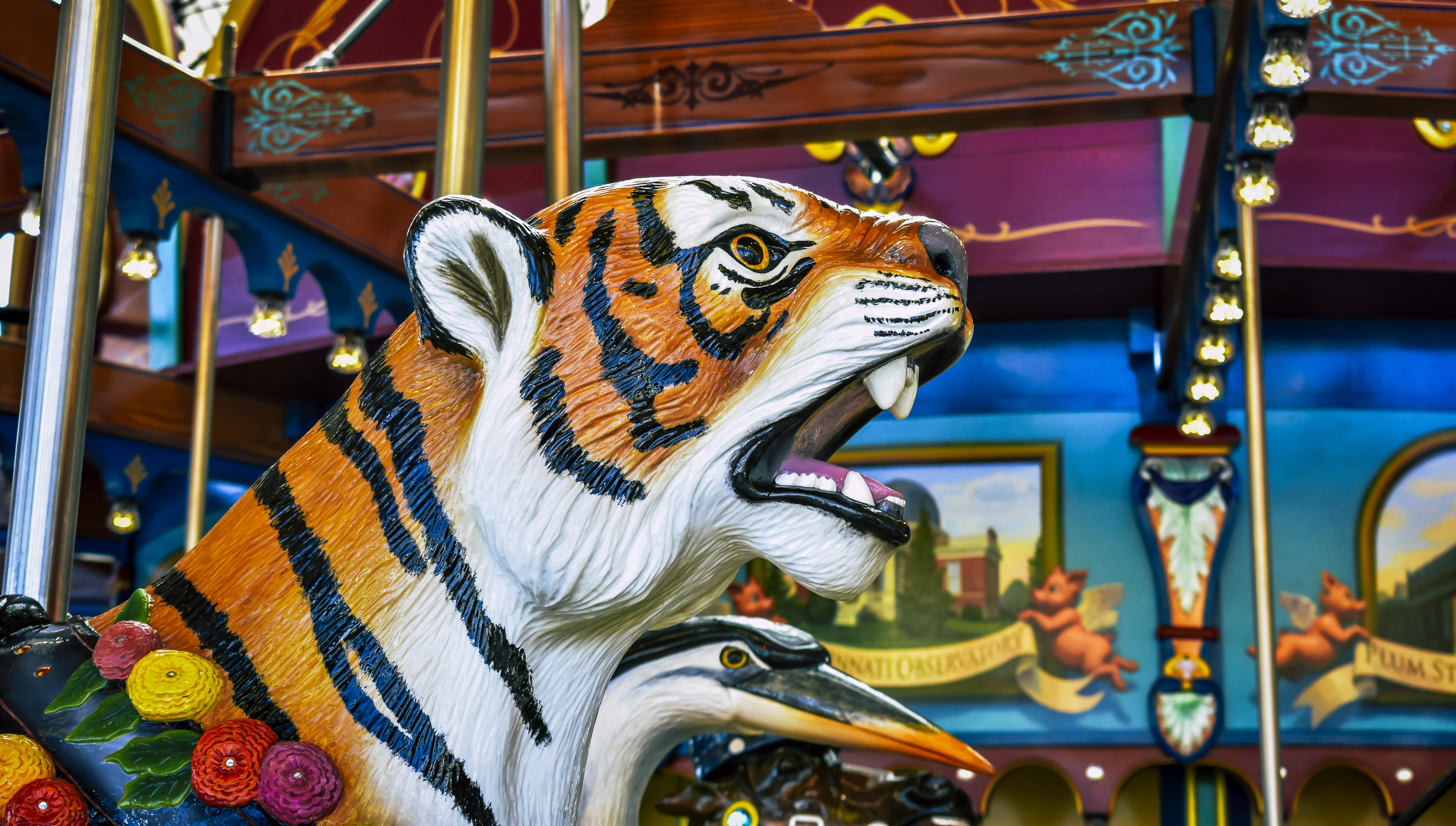 Free stock photo of tiger, color, carousel, amusement