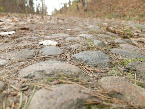 Бесплатное стоковое фото с дорога, камень