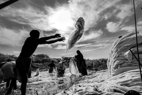 Fotobanka sbezplatnými fotkami na tému čierna a biela, čistenie, deň, krajina