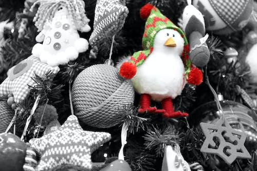 Fotobanka sbezplatnými fotkami na tému Vianoce