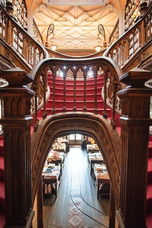 Fotos de stock gratuitas de escalera, ivo rainha, librería, livraria lello