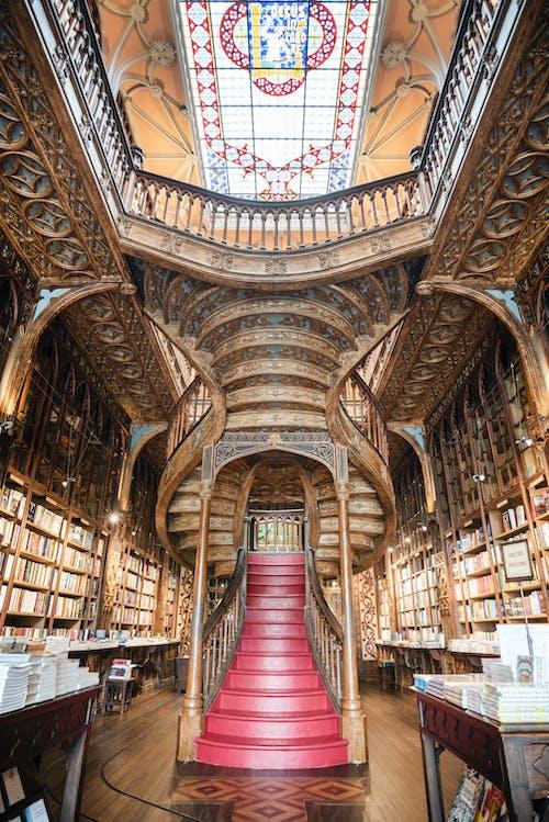 Free stock photo of architecture, bookshop, Ivo Rainha, Livraria Lello