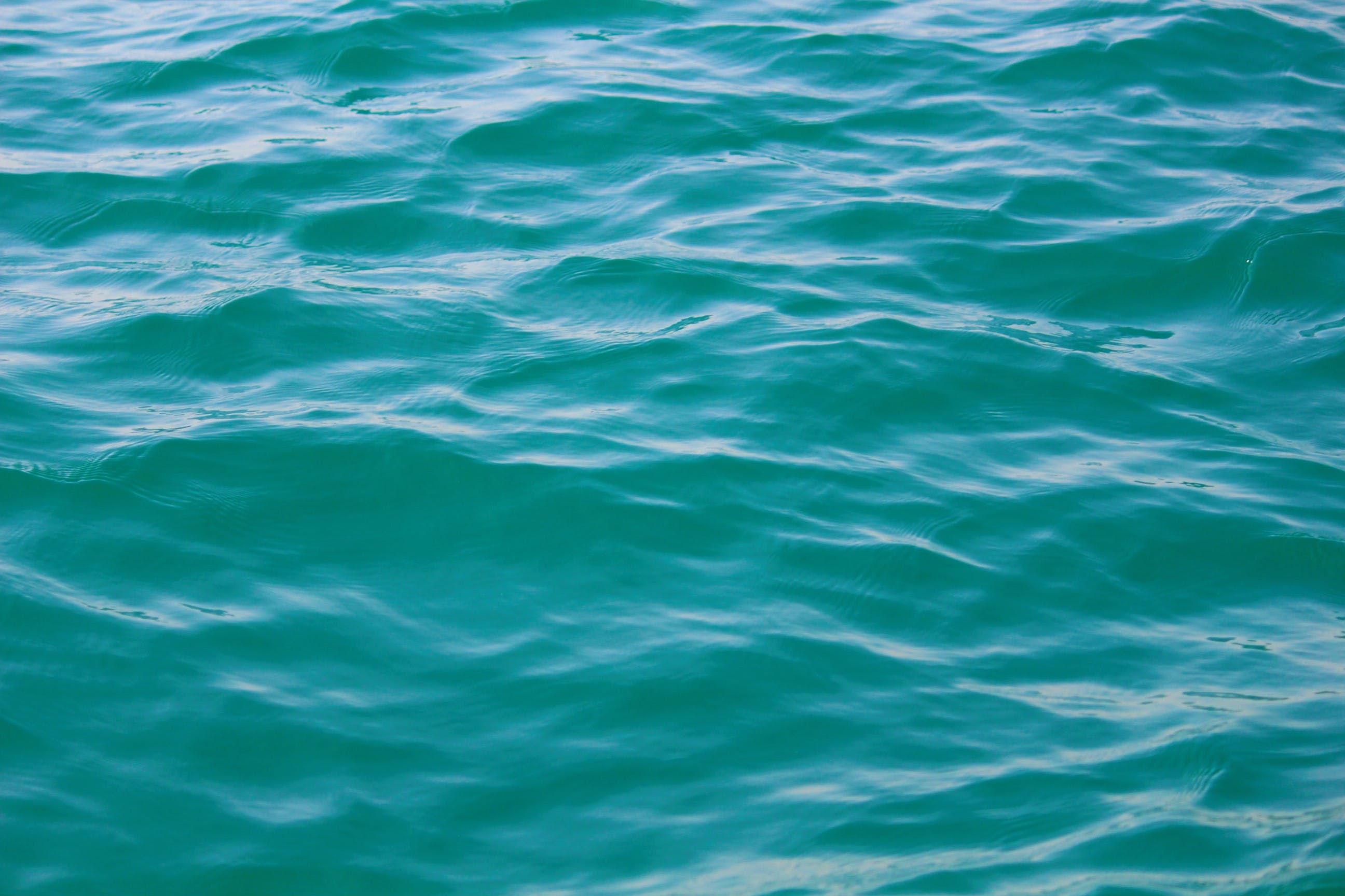 Photo of Ripple of Water