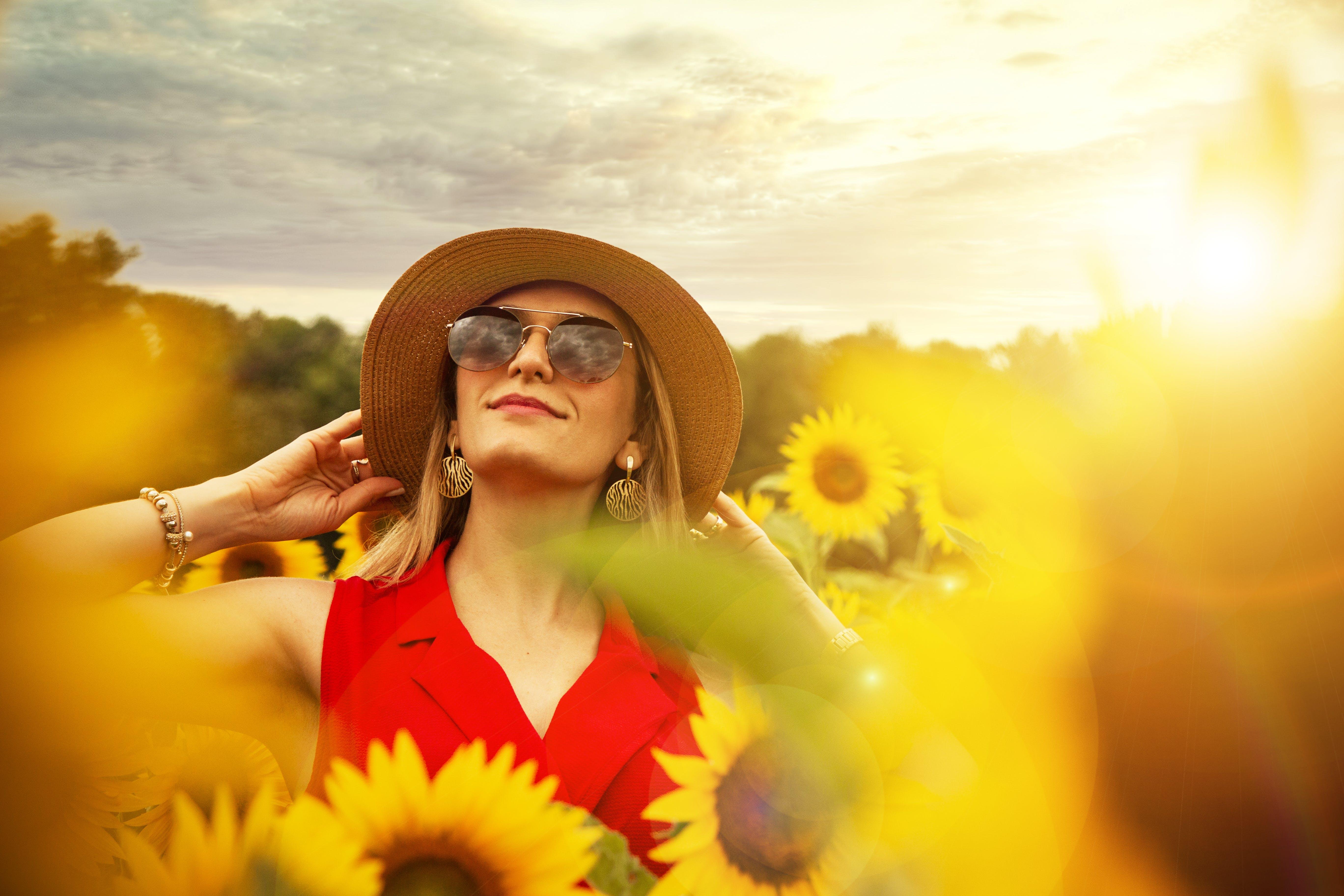 Free stock photo of beauty, field, flower, flowers