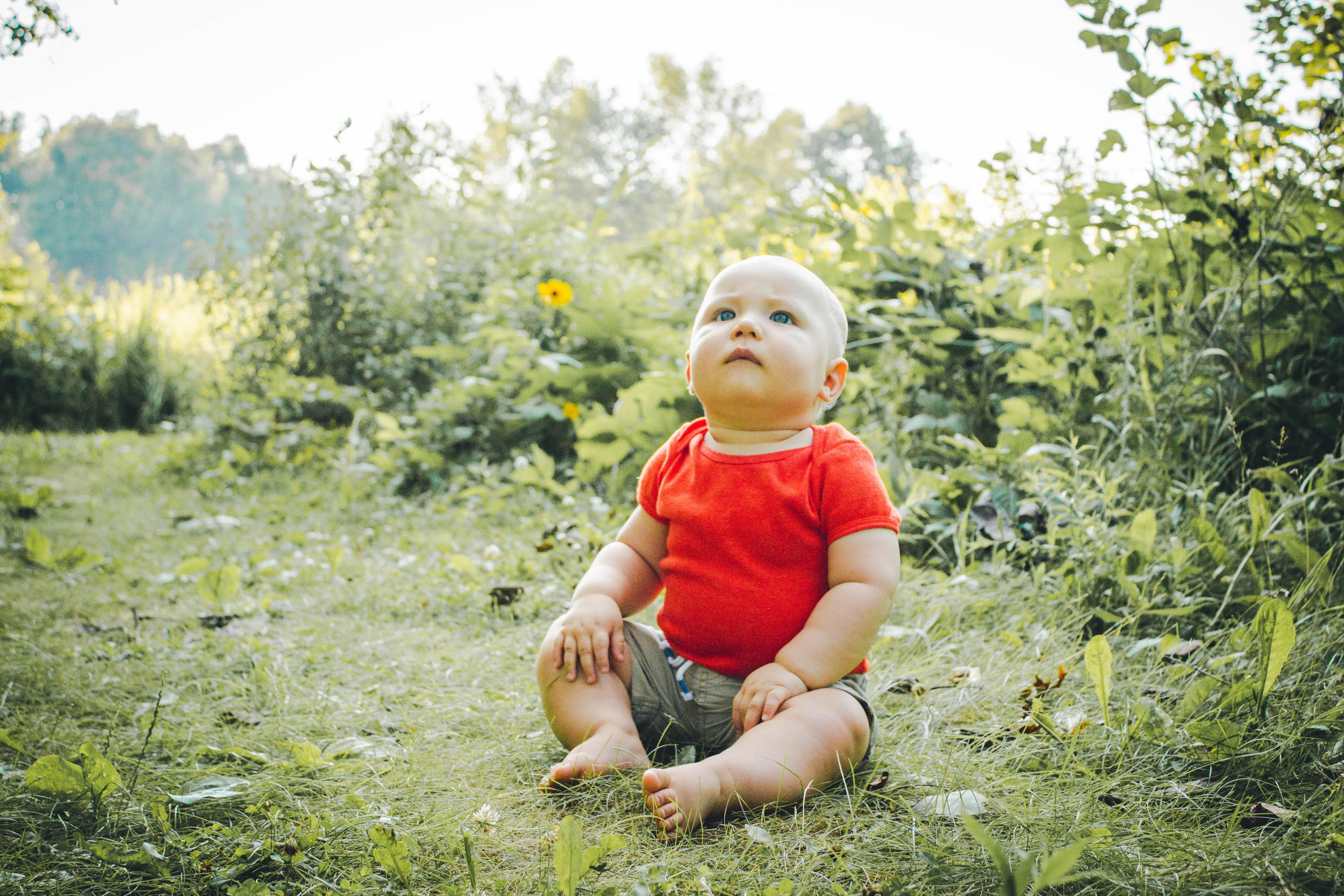 Základová fotografie zdarma na téma chlapec, dětství, dítě, hřiště