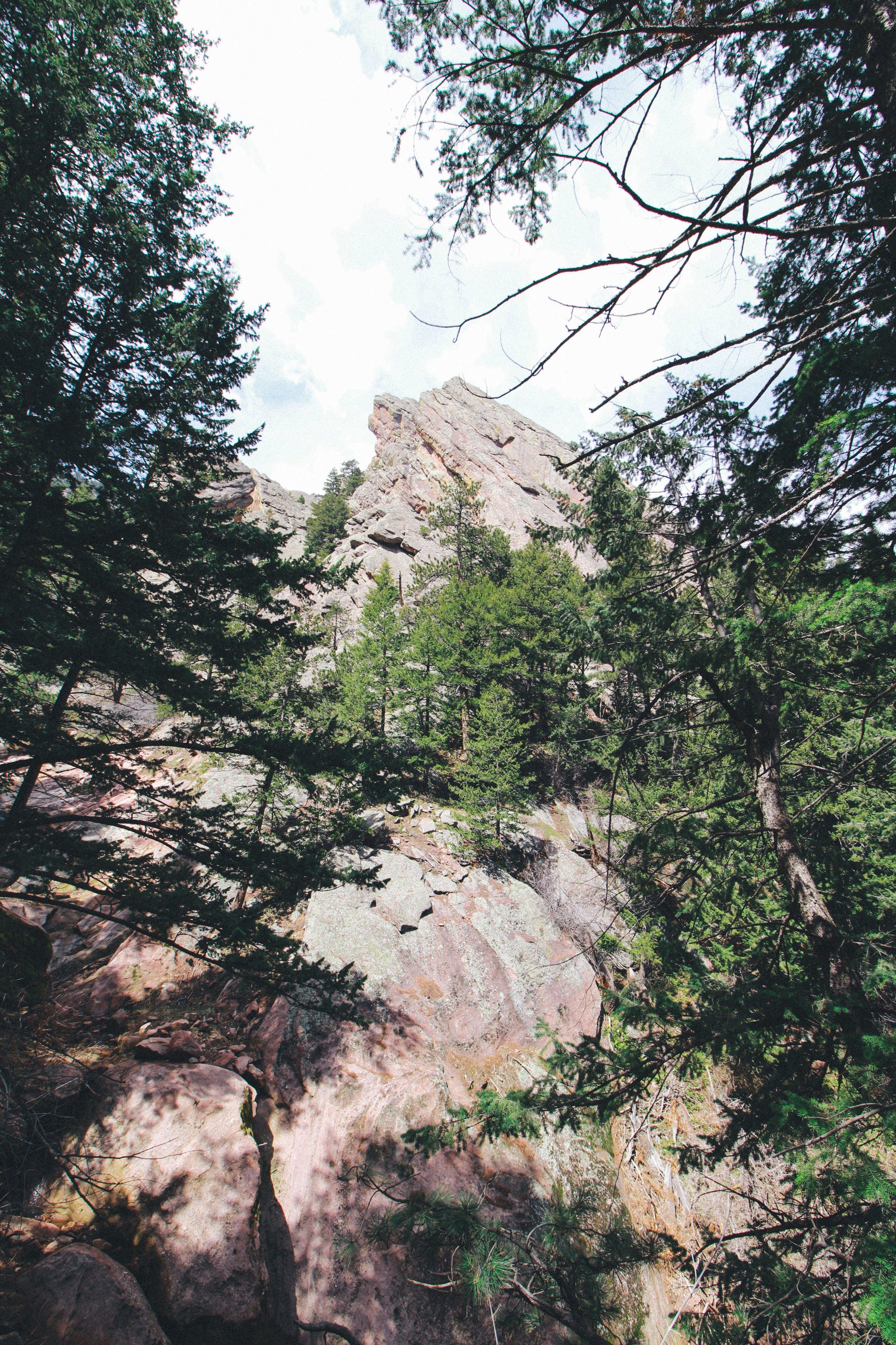 Free stock photo of big rocks, climbing, forest, hiking