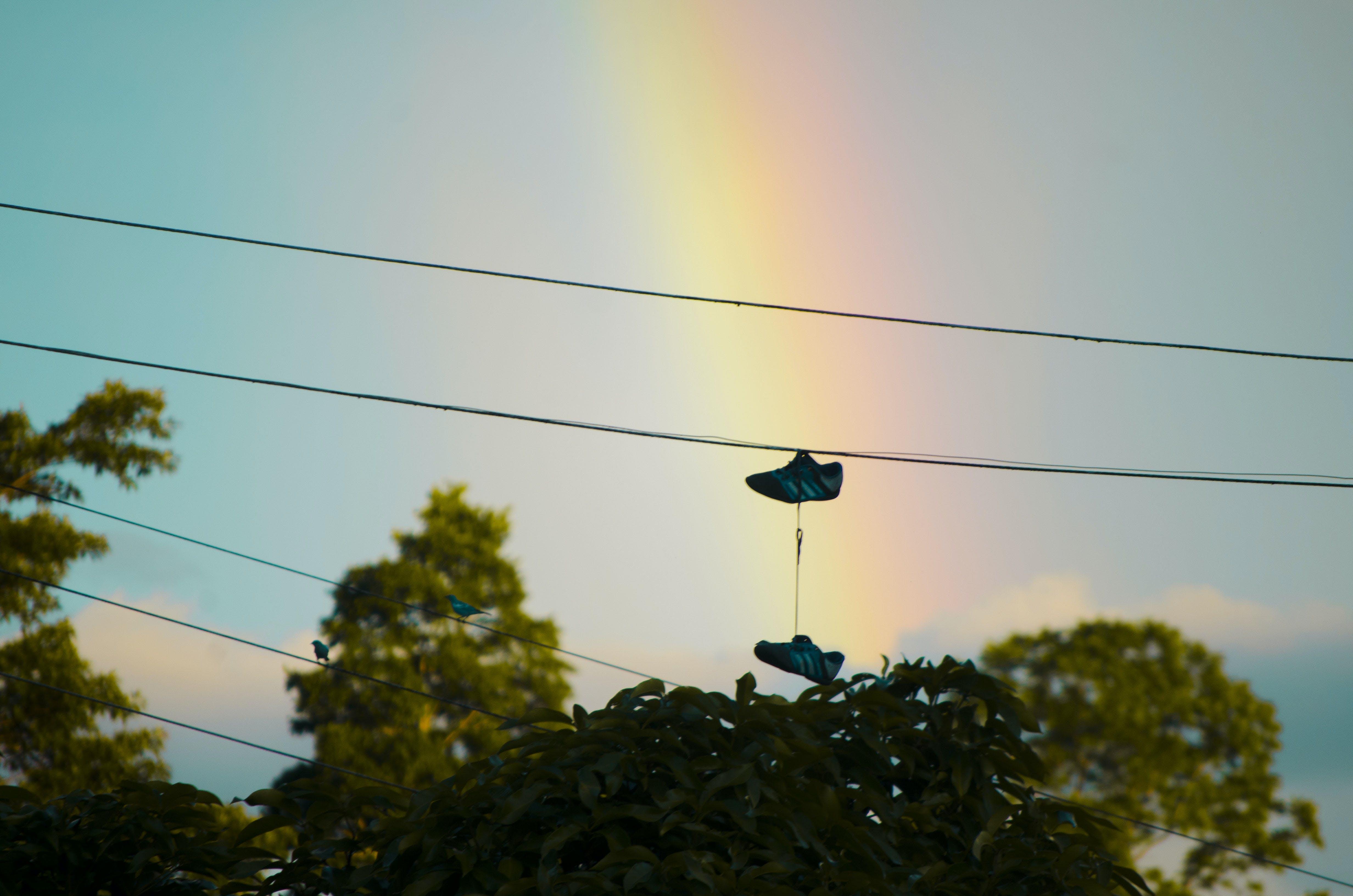 Free stock photo of arcoiris