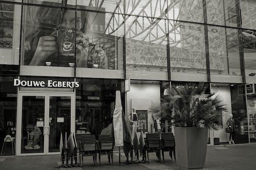 人, 咖啡館, 商店, 單色 的 免費圖庫相片
