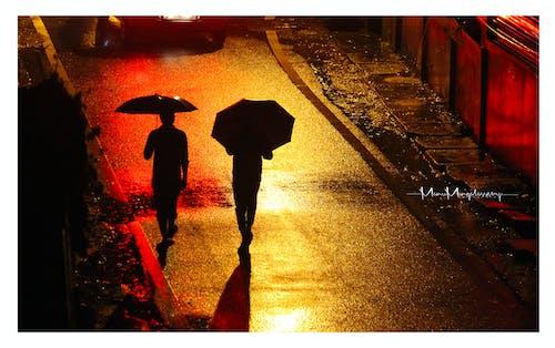 ゴールデンロード, シルエット, 傘, 後ろからの無料の写真素材