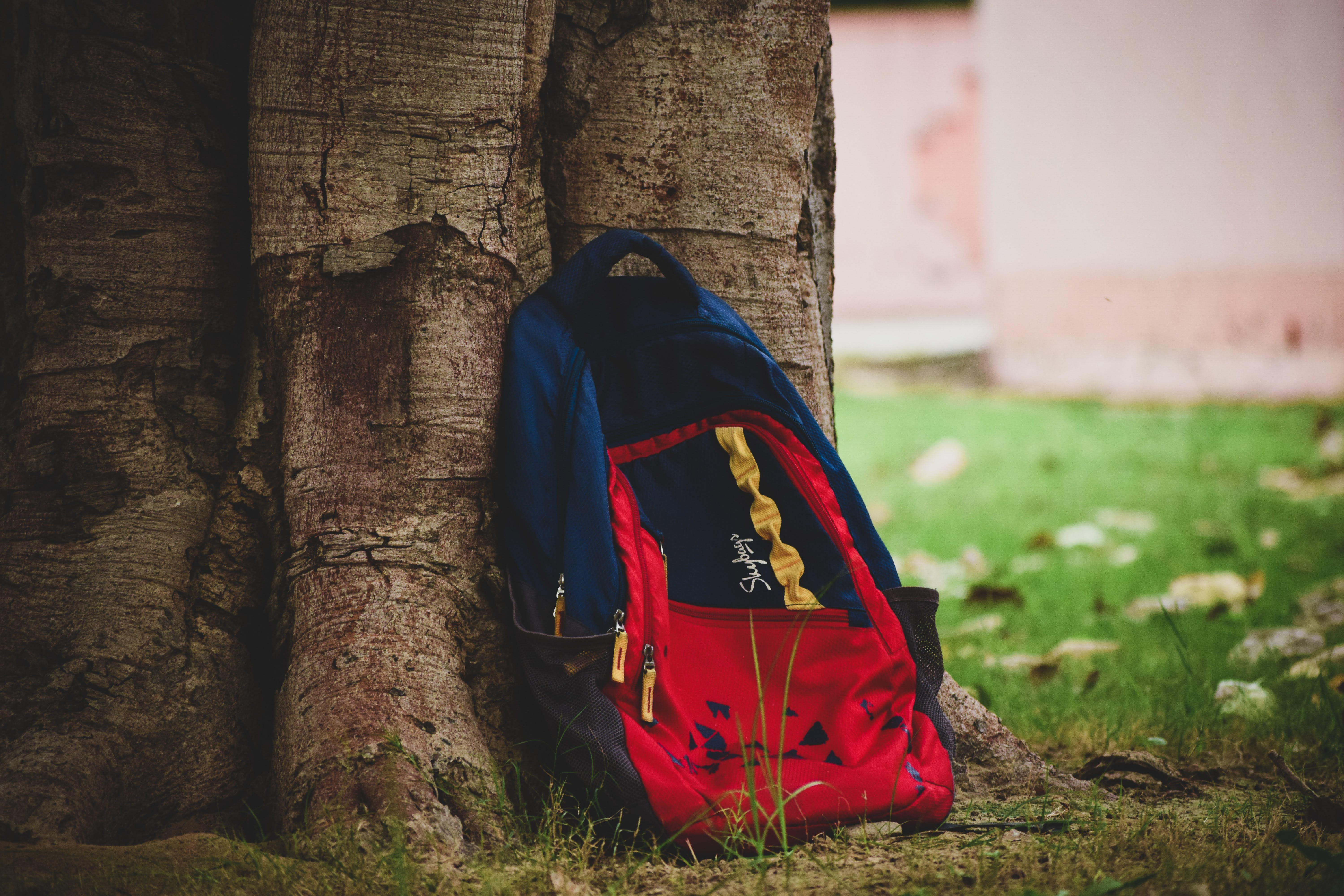 Close-Up Photography of Backpack on Tree