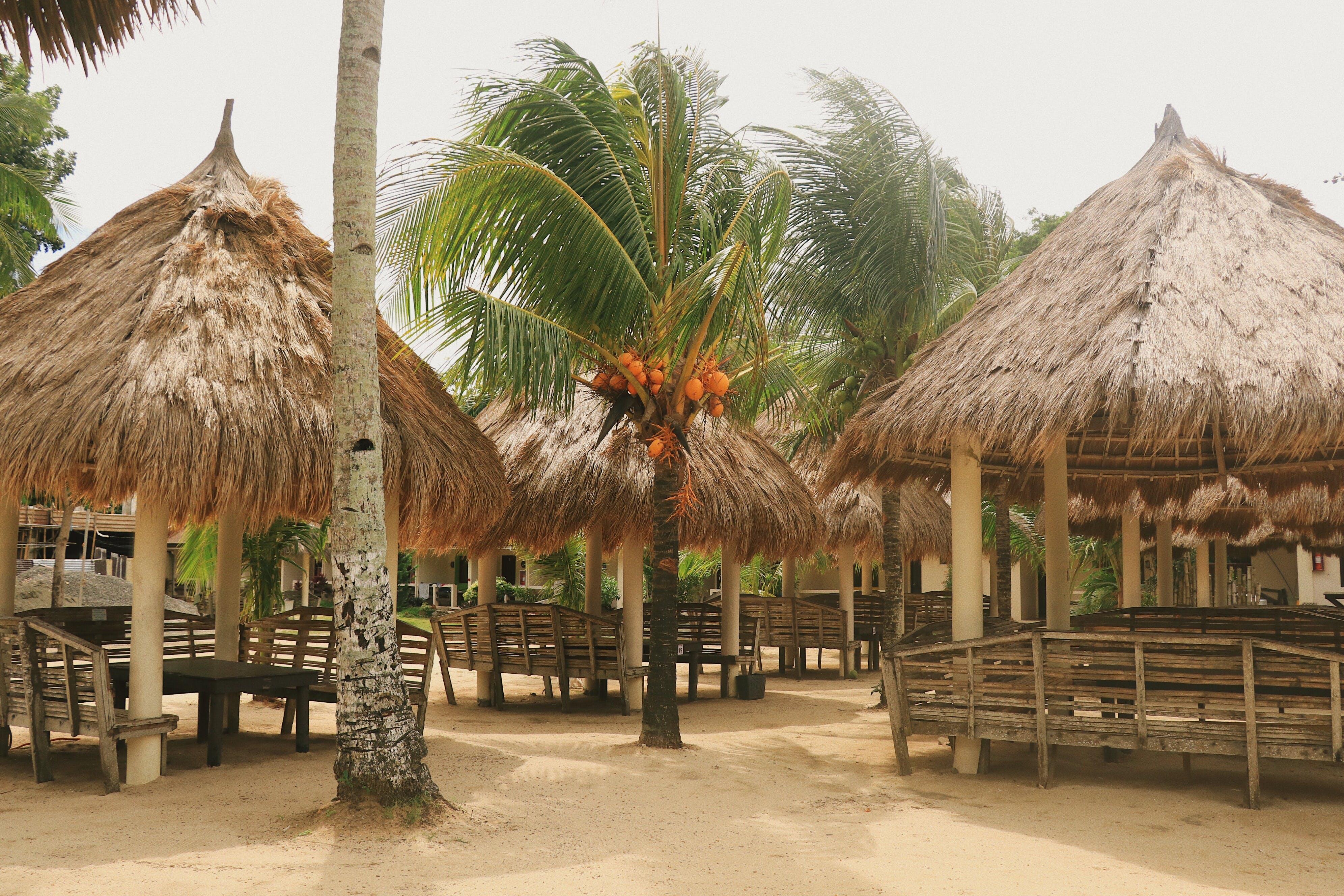 Free stock photo of cottage, cottages, nipa hut, Kubo