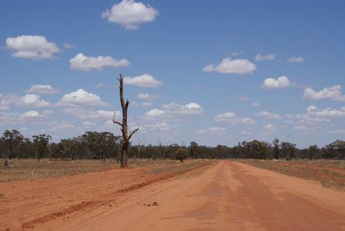 Fotos de stock gratuitas de desierto australiano, interior australiano, paisaje